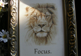 """FOCUS""; 5"" x 7"" framed reminder"