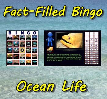 Fact-Filled Bingo - Ocean Life