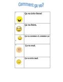 Feelings French