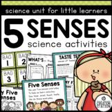 Five Senses Science Activities