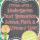 Kindergarten Next Generation Science, Math & Literacy FREEBIE