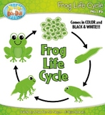 Frog Life Cycle Clipart Set — Comes In Color and Black & White!