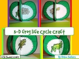 Frog Life Cycle Craft: {3-D Life Cycle of a Frog Craftivity}
