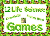 Game: Forest ecosystems - 12  kinesthetic games in 1