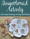 Fun Gingerbread Activity: Life Cycle and How To Writing Activity