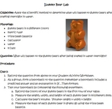 Gummy Bear Summative Assessment
