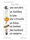 Halloween Vocabulary / Flashcards (FRENCH)