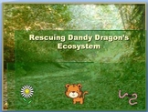 Help Dandy Dragon Repair His Ecosystem!