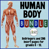 Human Body Interactive Notebooks or Warm Ups GROWING Bundle