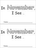 In November Emergent Reader Preschool Kindergarten Months