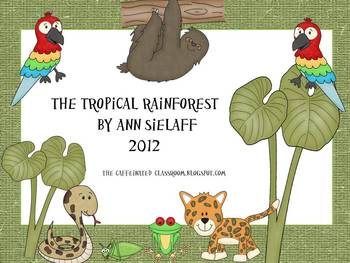 In the Tropical Rainforest