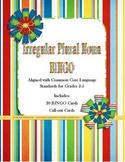 Irregular Plural Nouns Bingo! Grades 2-3 Literacy Center