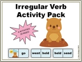 Irregular Verbs Activity Pack