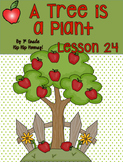 Journeys 1st Grade Lesson 24...A Tree is a Plant...practic