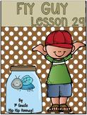 Journeys 1st Grade Lesson 29...Fly Guy...Supplemental Packet