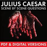 Julius Caesar, Visually Stunning Study Guide Worksheets fo