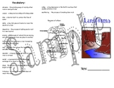 Landforms Unit Trifold Study Guide