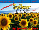 Lessons in a Jiffy: Sunflowers (Guided/Shared Reading and