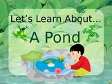 Let's Learn About A Pond! (Powerpoint)