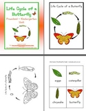 Life Cycle of a Butterfly Unit (Preschool to Kindergarten)