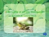 Life Cycle of a Frog Webquest