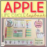 Life Cycle of an Apple Lapbook {with 10 foldables} Apple T