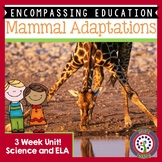 Mammal Adaptations Next Generation Science and Common Core