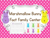 Math Center for Math Fact Families {Spring Theme}