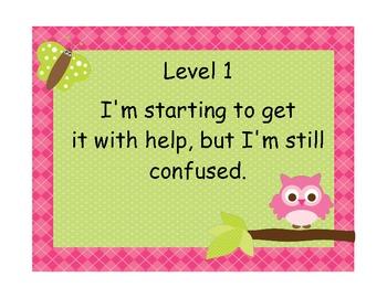 Marzano Student Levels of Understanding - Owl Theme