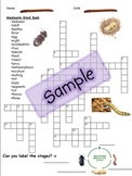 Mealworms Mega Puzzle
