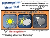 Metacognition Visual - Visual Tool for Evaluating Understanding