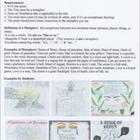 Metaphor Poem & Activity