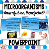 Microorganisms PowerPoint Presentation: Beneficial or Harm