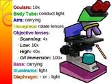 Microscope Use and Care