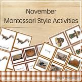 Montessori Style Activities for November