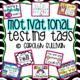 Motivational Testing Tags: Standardized Test Prep