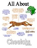 My All About Cheetahs Book - African Animal Unit Study