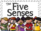 My Five Senses Unit Plan