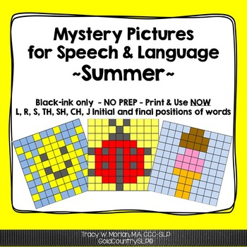 Mystery Pictures for Speech & Language - Summer 6,900 Words