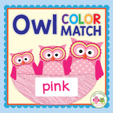 Owl Color Match & Size Sorting Activity:  Early Math Conce