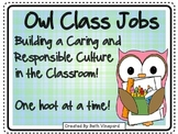 Owl Themed Class Jobs for Primary *36 jobs PLUS written ou