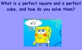 Perfect Squares and Perfect Cubes Flipchart 8th Grade Comm