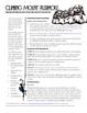Performance Task Assessment: Quadratic Functions and Verti