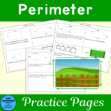 Perimeter Practice using critical thinking