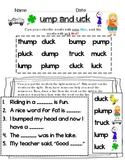 Phonics Word Family Recognition, Reading, and Short Answer