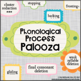 Phonological Process Palooza! {fun therapy activities for