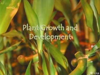 Plant Growth and Development PowerPoint Presentation Lesson Plan