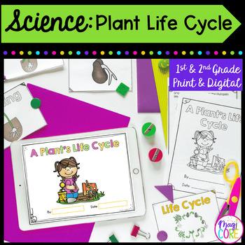 Plant Life Cycle