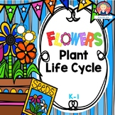 Plant Life Cycle {ELA and Science Printables}
