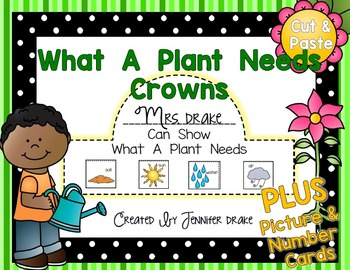 Plant Needs To Grow Crown